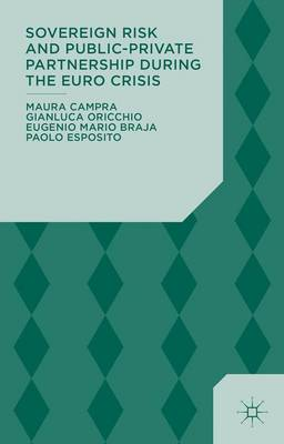 Sovereign Risk and Public-Private Partnership During the Euro Crisis (Hardback)