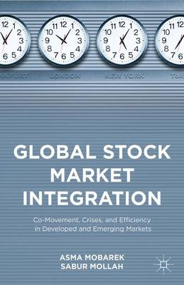 Global Stock Market Integration: Co-Movement, Crises, and Efficiency in Developed and Emerging Markets (Hardback)