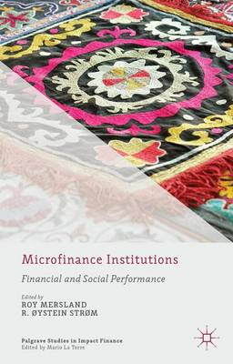 Microfinance Institutions: Financial and Social Performance - Palgrave Studies in Impact Finance (Hardback)