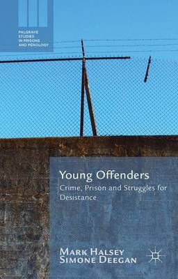 Young Offenders: Crime, Prison and Struggles for Desistance - Palgrave Studies in Prisons and Penology (Hardback)