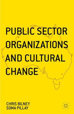 Public Sector Organizations and Cultural Change (Hardback)