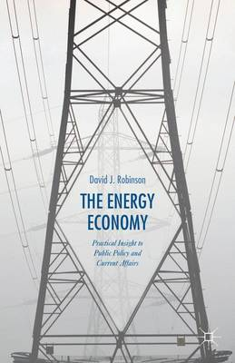 The Energy Economy: Practical Insight to Public Policy and Current Affairs (Hardback)