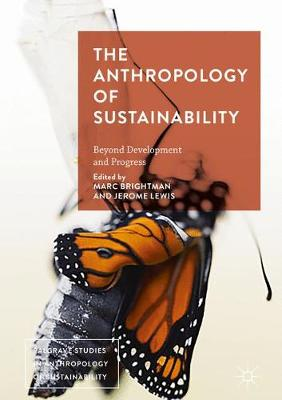 The Anthropology of Sustainability: Beyond Development and Progress - Palgrave Studies in Anthropology of Sustainability (Hardback)