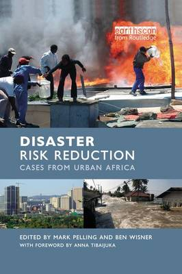 Disaster Risk Reduction: Cases from Urban Africa (Paperback)