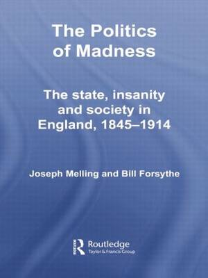The Politics of Madness: The State, Insanity and Society in England, 1845-1914 - Routledge Studies in the Social History of Medicine (Paperback)