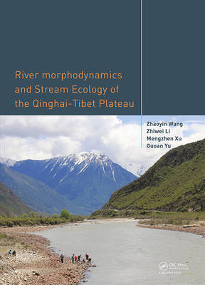 River Morphodynamics and Stream Ecology of the Qinghai-Tibet Plateau (Hardback)