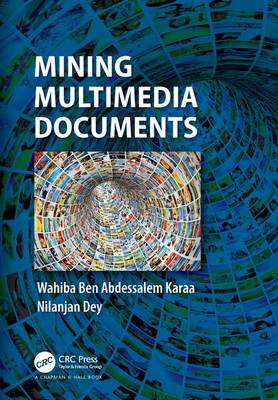 Mining Multimedia Documents (Hardback)