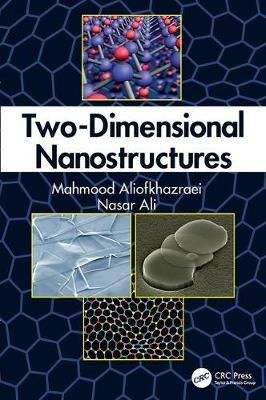 Two-Dimensional Nanostructures (Paperback)