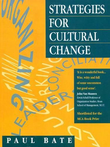 Strategies for Cultural Change (Hardback)