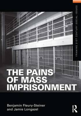 The Pains of Mass Imprisonment - Framing 21st Century Social Issues (Hardback)