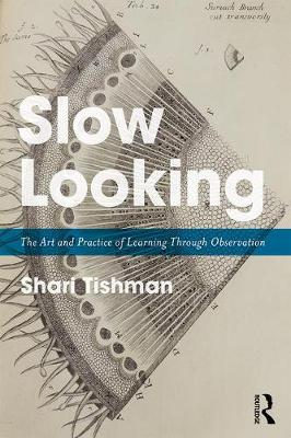 Slow Looking: The Art and Practice of Learning Through Observation (Paperback)