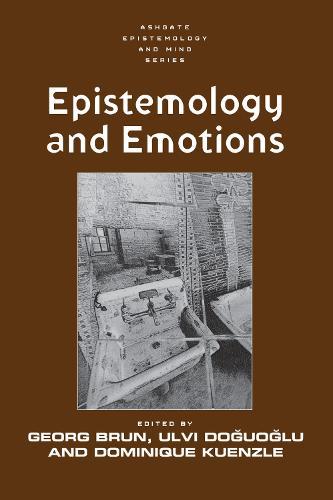 Epistemology and Emotions (Paperback)