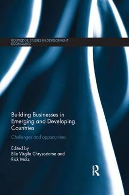 Building Businesses in Emerging and Developing Countries: Challenges and Opportunities - Routledge Studies in Development Economics (Paperback)