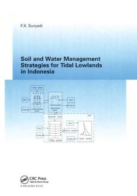 Soil and Water Management Strategies for Tidal Lowlands in Indonesia (Hardback)