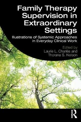 Family Therapy Supervision in Extraordinary Settings: Illustrations of Systemic Approaches in Everyday Clinical Work (Paperback)