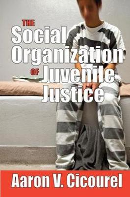 The Social Organization of Juvenile Justice (Hardback)