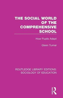 The Social World of the Comprehensive School: How Pupils Adapt (Paperback)