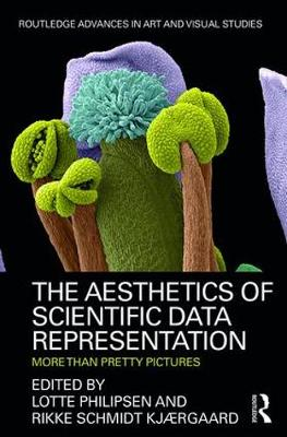 The Aesthetics of Scientific Data Representation: More than Pretty Pictures - Routledge Advances in Art and Visual Studies (Hardback)