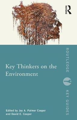 Key Thinkers on the Environment - Routledge Key Guides (Paperback)