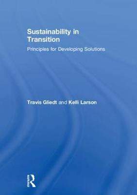 Sustainability in Transition: Principles for Developing Solutions (Hardback)