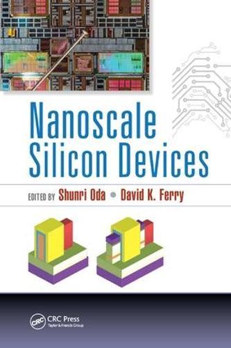 Nanoscale Silicon Devices (Paperback)