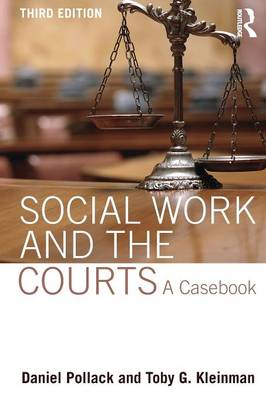 Social Work and the Courts: A Casebook (Paperback)