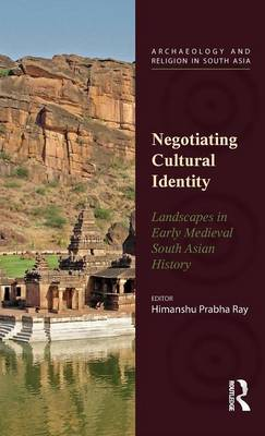 Negotiating Cultural Identity: Landscapes in Early Medieval South Asian History - Archaeology and Religion in South Asia (Hardback)