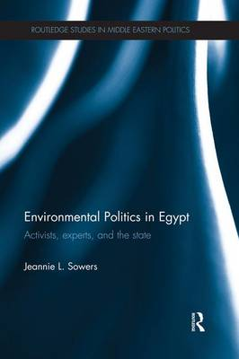 Environmental Politics in Egypt: Activists, Experts and the State - Routledge Studies in Middle Eastern Politics (Paperback)