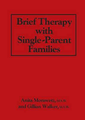 Brief Therapy With Single-Parent Families (Paperback)