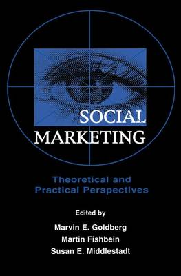 Social Marketing: Theoretical and Practical Perspectives (Paperback)