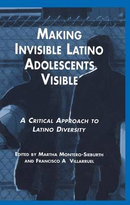 Making Invisible Latino Adolescents Visible: A Critical Approach to Latino Diversity (Paperback)