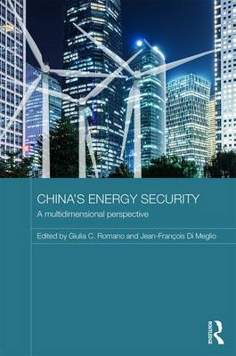 China's Energy Security: A Multidimensional Perspective - Routledge Contemporary China Series (Hardback)