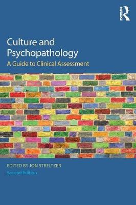 Culture and Psychopathology: A Guide To Clinical Assessment (Paperback)