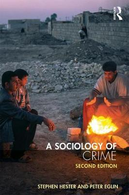 A Sociology of Crime: Second edition (Paperback)