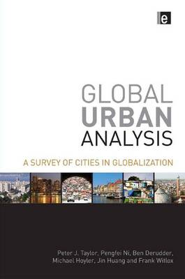 Global Urban Analysis: A Survey of Cities in Globalization (Paperback)