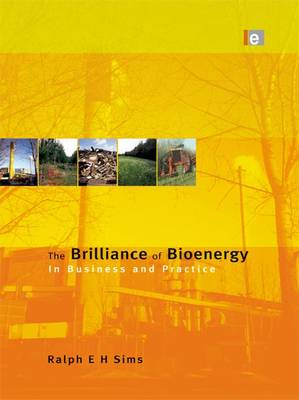 The Brilliance of Bioenergy: In Business and In Practice (Paperback)