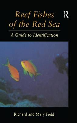 Reef Fish Of The Red Sea (Paperback)