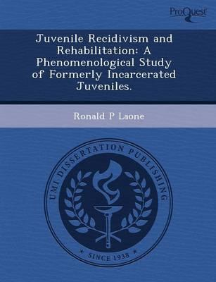 Juvenile Recidivism and Rehabilitation: A Phenomenological Study of Formerly Incarcerated Juveniles (Paperback)