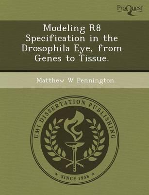 Modeling R8 Specification in the Drosophila Eye (Paperback)
