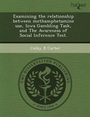 Examining the Relationship Between Methamphetamine Use (Paperback)