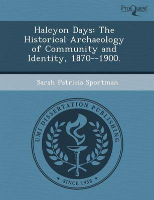 Halcyon Days: The Historical Archaeology of Community and Identity (Paperback)
