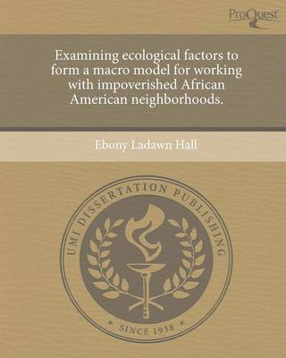 Examining Ecological Factors to Form a Macro Model for Working with Impoverished African American Neighborhoods (Paperback)