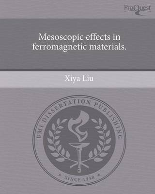Mesoscopic Effects in Ferromagnetic Materials (Paperback)