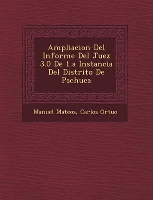 Ampliacion del Informe del Juez 3.0 de 1.a Instancia del Distrito de Pachuca (Paperback)