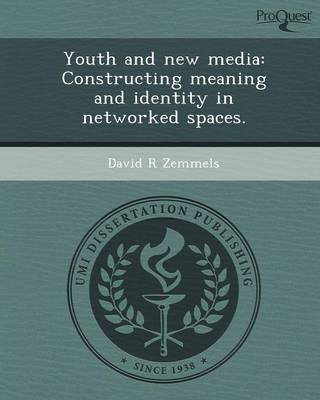 Youth and New Media: Constructing Meaning and Identity in Networked Spaces (Paperback)