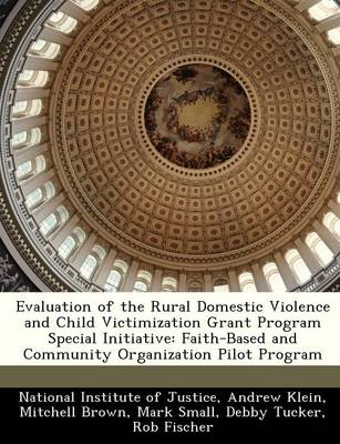 Evaluation of the Rural Domestic Violence and Child Victimization Grant Program Special Initiative: Faith-Based and Community Organization Pilot Program (Paperback)