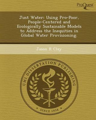 Just Water: Using Pro-Poor (Paperback)