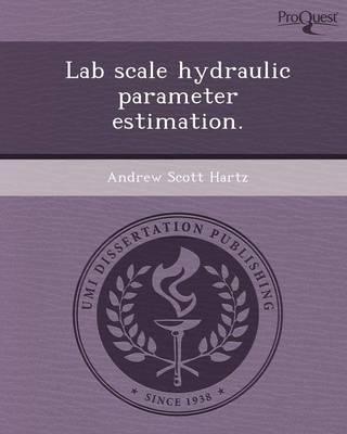 Lab Scale Hydraulic Parameter Estimation (Paperback)