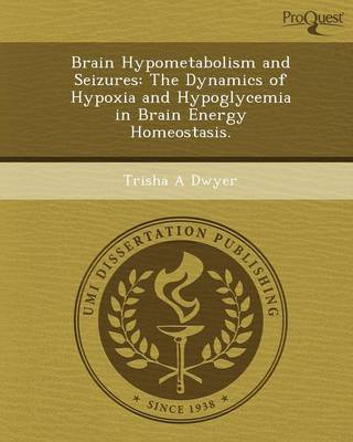 Brain Hypometabolism and Seizures: The Dynamics of Hypoxia and Hypoglycemia in Brain Energy Homeostasis (Paperback)