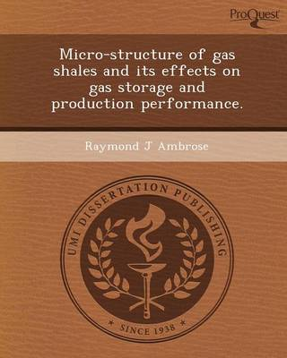 Micro-Structure of Gas Shales and Its Effects on Gas Storage and Production Performance (Paperback)